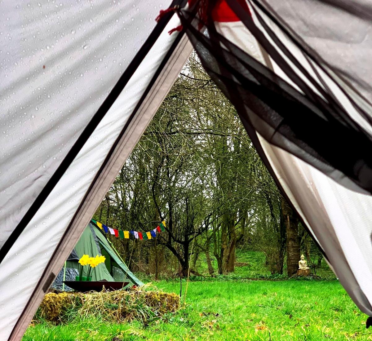Shakyamuni clearing seen through my tent.